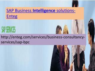 SAP Business Objects Services-Enteg