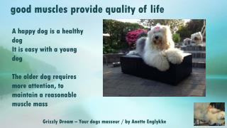 Grizzly Dream  –  Your dogs masseur / by Anette Englykke
