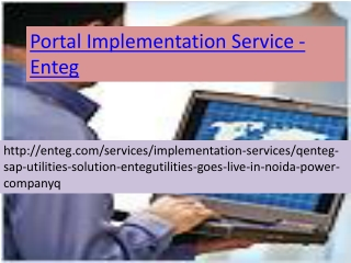 SAP Implementation Services-Enteg