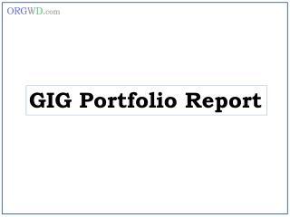 GIG Portfolio Report