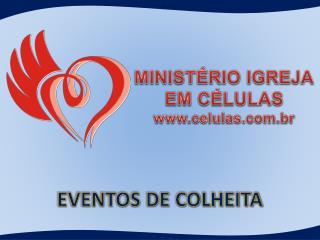 EVENTOS DE COLHEITA