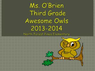 Ms. O'Brien  Third Grade Awesome Owls  2013-2014 North Forest Pines Elementary