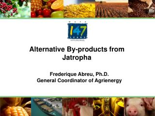 Alternative By-products from Jatropha