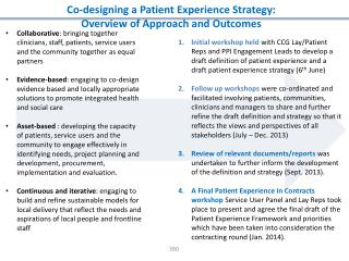 Co-designing a Patient  Experience Strategy:  Overview  of  Approach and Outcomes