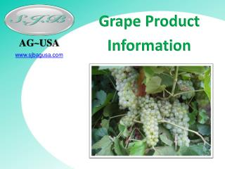 Grape Product  Information