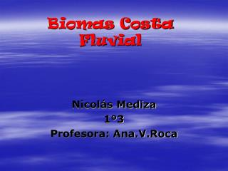 Biomas Costa Fluvial