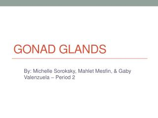Gonad Glands
