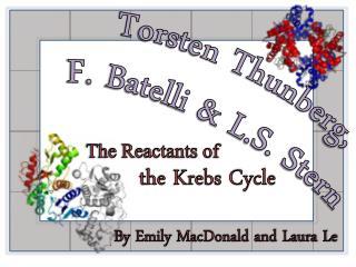 Torsten  Thunberg, F. Batelli & L.S. Stern