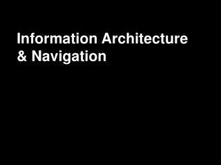 Information Architecture & Navigation