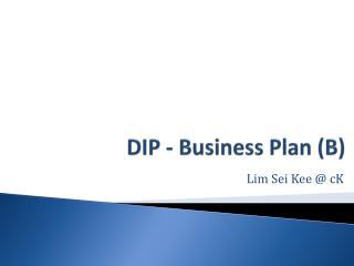 DIP - Business Plan (B)