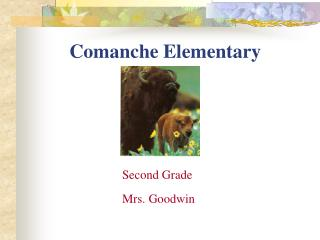 Comanche Elementary