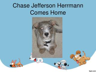 Chase Jefferson  Herrmann  Comes Home