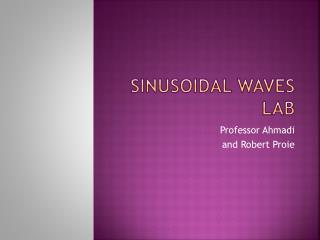 Sinusoidal Waves Lab