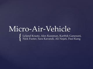 Micro-Air-Vehicle