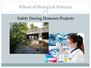 School of Biological Sciences