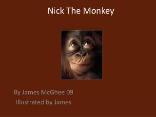 Nick The Monkey