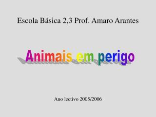 Escola B sica 2,3 Prof. Amaro Arantes