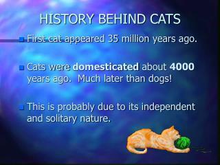 HISTORY BEHIND CATS