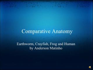 �Comparative Anatomy
