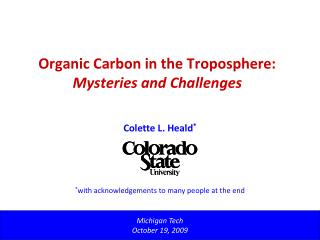 Organic Carbon in the Troposphere: Mysteries and Challenges