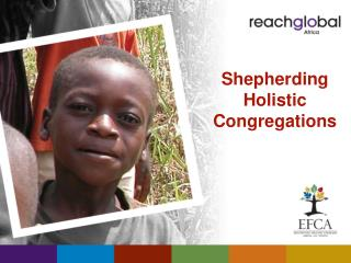 Shepherding Holistic Congregations