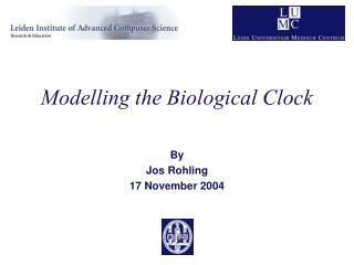 Modelling the Biological Clock