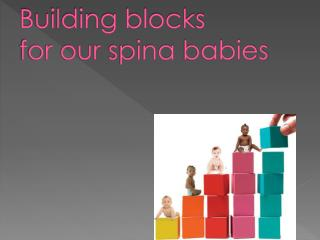 Building blocks for our  spina  babies