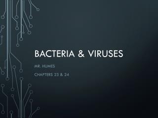 Bacteria & Viruses