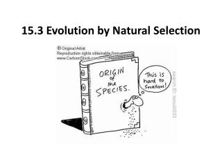 15.3 Evolution by Natural Selection