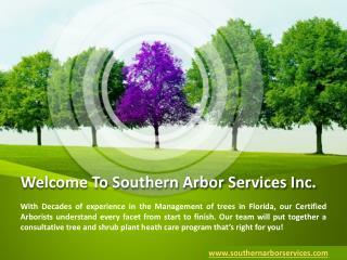 Trees Management Services