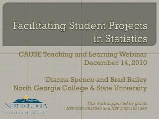 Facilitating Student Projects in Statistics