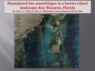 Humanized tree assemblages in a barrier island landscape: Key Biscayne, Florida