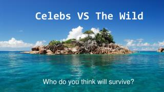 Celebs VS The Wild