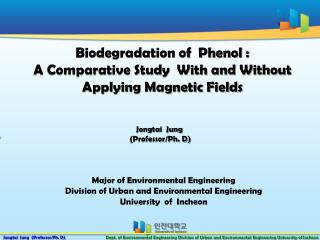 Biodegradation of  Phenol :  A Comparative Study  With and Without Applying Magnetic Fields