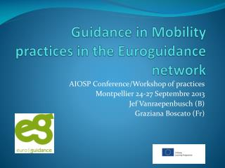 Guidance in Mobility practices in the  Euroguidance  network