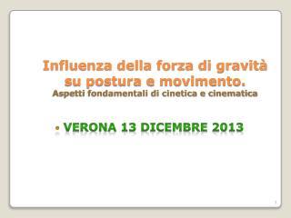 Verona 13  DICembre  2013