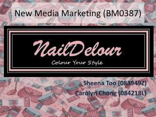 New Media Marketing (BM0387)