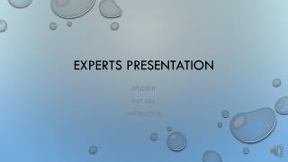 Experts Presentation