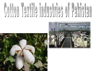 Cotton Uses and Products