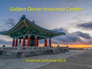 Golden Ocean Insurance Center