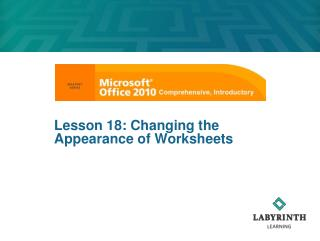 Lesson 18: Changing the Appearance of Worksheets