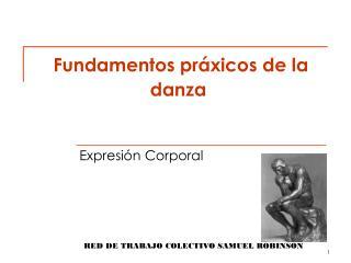 Fundamentos  práxicos  de la danza