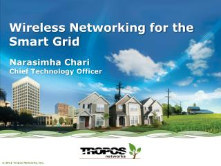 Wireless Networking for the Smart Grid
