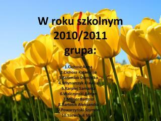 W roku szkolnym 2010/2011 grupa: