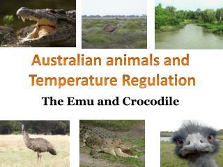 The Emu and Crocodile