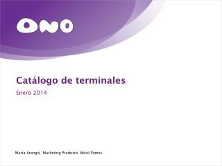 Catálogo de terminales