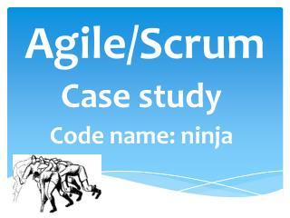 Agile/Scrum