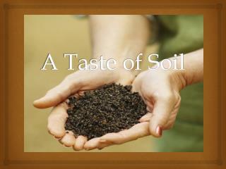 A Taste of Soil
