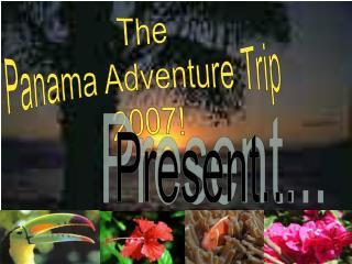 The Panama Adventure Trip  2007!