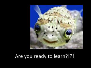 Are you ready to learn?!?!